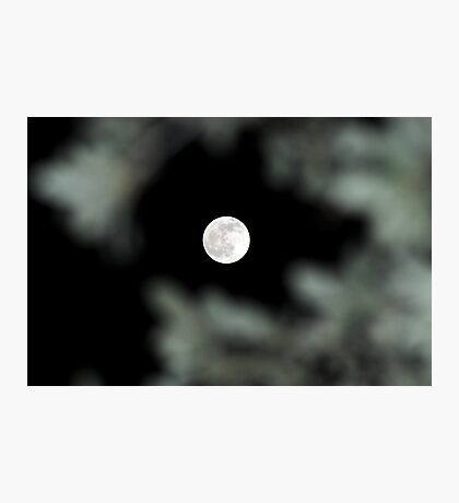 Lunar Eclipse Begins- Lycan Silhouette Photographic Print