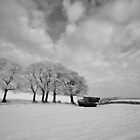 Winter field by fatty-arbuckle