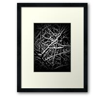The Wood for the Trees Framed Print