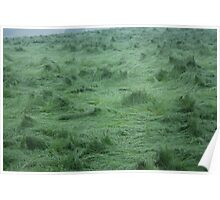 Whirlwind Grass Poster