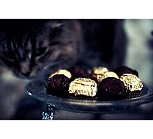 Chocolate's Not for You Photographic Print