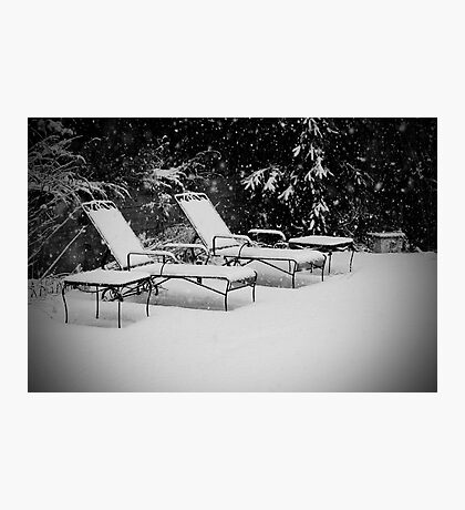 Bed of Snow Photographic Print