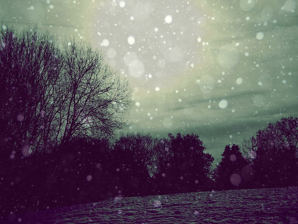 Winter  by Josephine Pugh