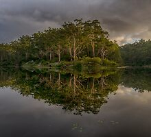 Reflections by Steve Randall