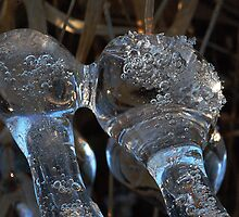Ice kisses by cherylc1