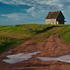 Prince Edward Island Barn by Randall Nyhof