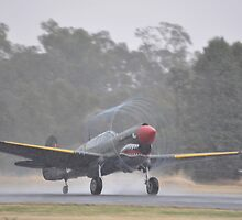 Temora Airshow 2014 - Kittyhawk Take-off by muz2142