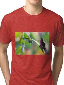 neighbors Tri-blend T-Shirt