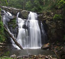 Stephenson Falls in Summer Rain by Cole Stockman