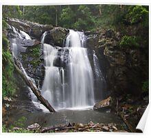 Stephenson Falls in Summer Rain Poster