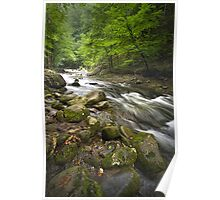 Smokey Mountain Stream 517 Poster
