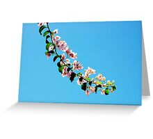 Just a branch between the sky Greeting Card
