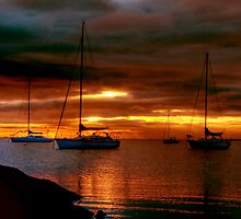 The Start of a New Day at Eastern Beach by Christine Smith