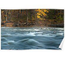 Thornapple River 0118 Poster