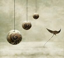 Free by PhotoDream Art