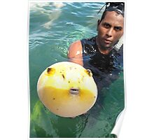 Adorable Puffer Fish Poster