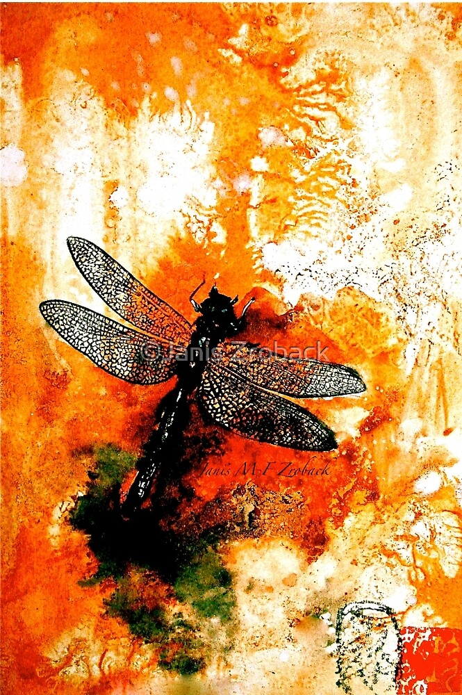 The Nature of Things...The Dragonfly by ©Janis Zroback