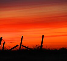 Country Sunset by Karen  Rubeiz