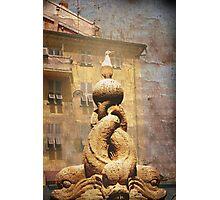fish market jendarme Photographic Print
