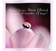 "(Dum Spiro Spero~Latin) ""While I breathe I hope"" Poster"