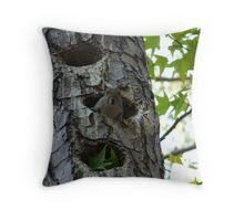 Squirrel in a woodpecker nest Throw Pillow