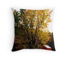 Vermont Countryside Throw Pillow
