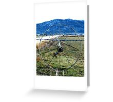 Sprinklers - Blue Mountains  Greeting Card