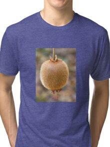Kiwi Fruit Tri-blend T-Shirt