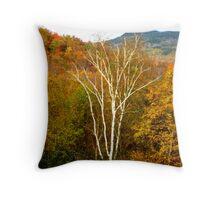 Striking Birch Throw Pillow