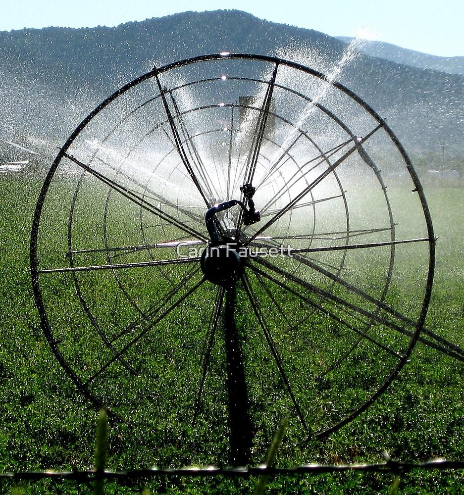 Sprinklers - Bull's Eye  by Carin Fausett
