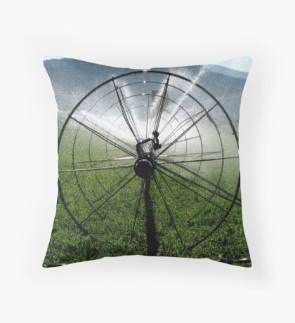 Sprinklers - Bull's Eye  Throw Pillow