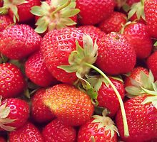 Strawberry Season! by Ann Allerup