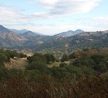 Santa Ynez Valley in December by Kathy Hogan