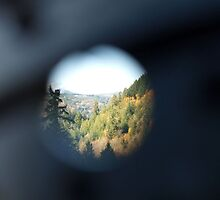 Bullet Hole View by Kathy Hogan