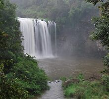 Dangar Falls 28-12-10. by Warren  Patten