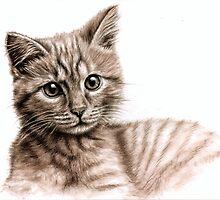 Little Kitten - what's up? by Nicole Zeug