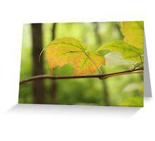 """August Color"" Greeting Card"