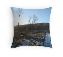 afternoon in the forest of dean Throw Pillow