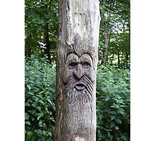 Tree Carving in the Woods Photographic Print