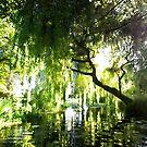 ~ River Brett by Christopher Cullen