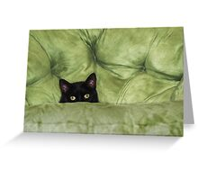 Green-Eyed Girl On Papason Chair Greeting Card
