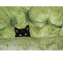 Green-Eyed Girl On Papason Chair Photographic Print