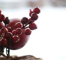 Plastic Berries by WET-photo