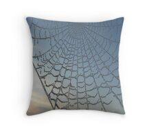Haw Frost on Cobweb Throw Pillow