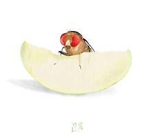 Fruit Fly by Arthropodart