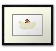 Fruit Fly Framed Print