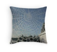 Haw Frost on Cobweb 2 Throw Pillow