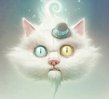 The Odd Kitty by Lukas Brezak
