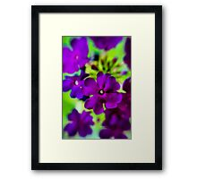 Psychedelic Purple  Framed Print