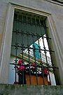 Door in Window - Maglie Italy by Debbie Pinard